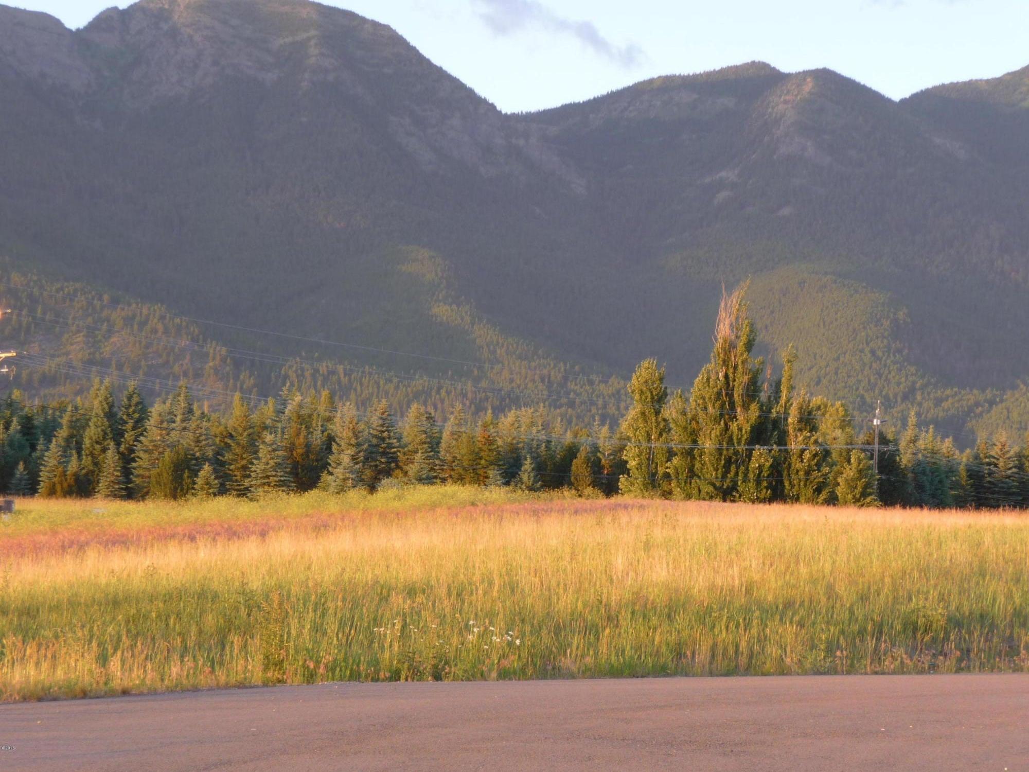 Land for Sale at Lake Blaine Road Kalispell, Montana 59901 United States