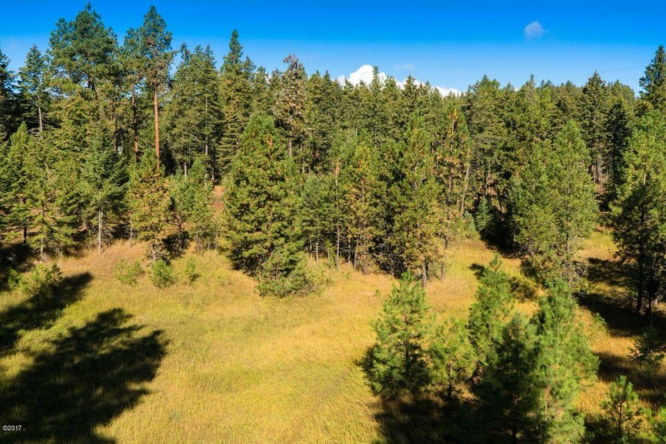 Additional photo for property listing at Indian Point Road  Rollins, Montana 59931 United States