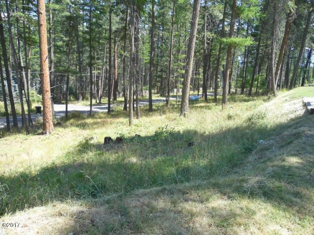2+ Acres Partly Wooded Lot