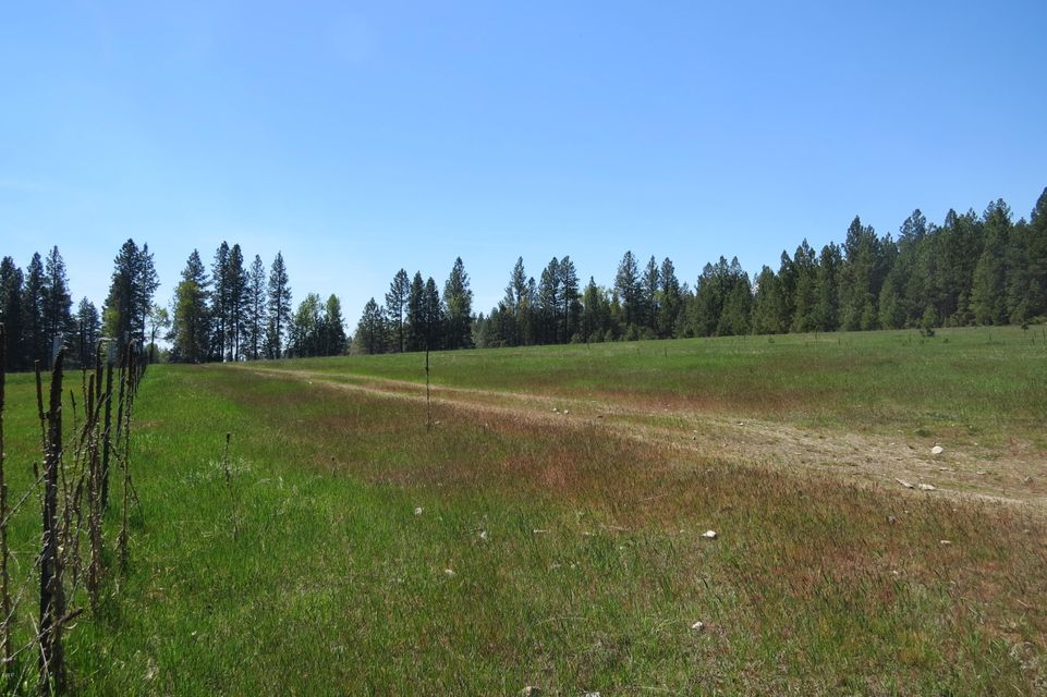 Additional photo for property listing at Sweeney Creek Loop Sweeney Creek Loop Florence, Montana 59833 United States