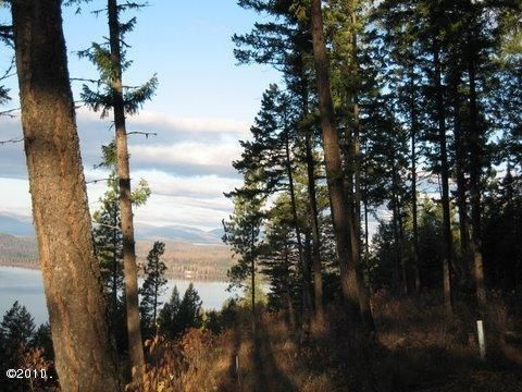 Additional photo for property listing at 362 Mule Deer Trail  Whitefish, Montana 59937 United States
