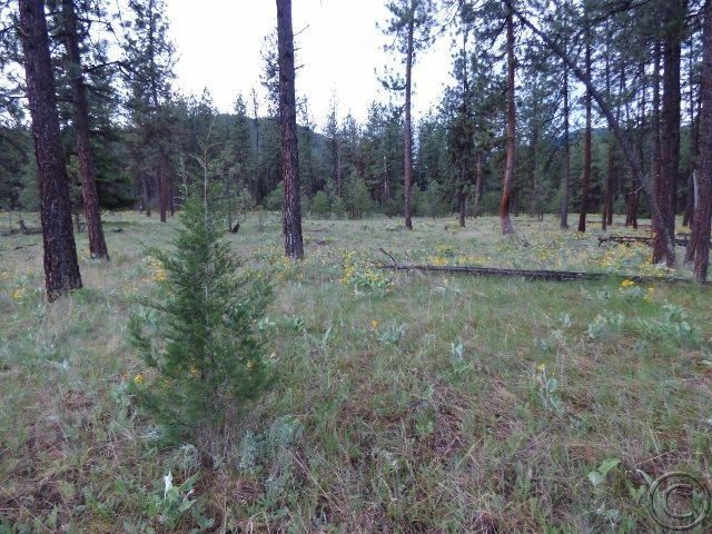 Additional photo for property listing at 81 Brockway Lane  Superior, Montana 59872 United States