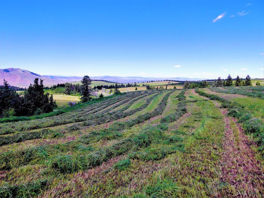 Land for Sale at Pistol Creek Road Pistol Creek Road St. Ignatius, Montana 59865 United States
