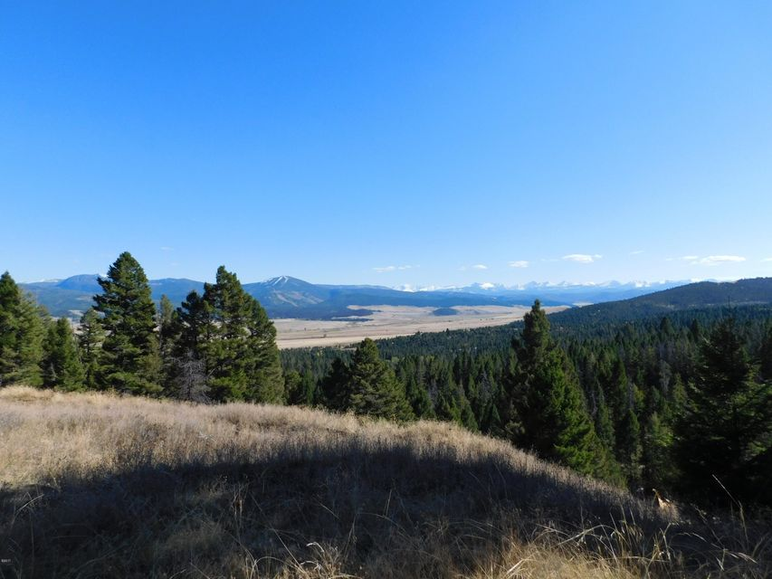 Land for Sale at 210 Slaughterhouse Lane 210 Slaughterhouse Lane Philipsburg, Montana 59858 United States