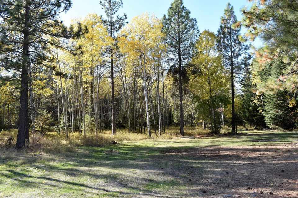 Additional photo for property listing at 32318 Bisson Lane 32318 Bisson Lane Polson, Montana 59860 United States