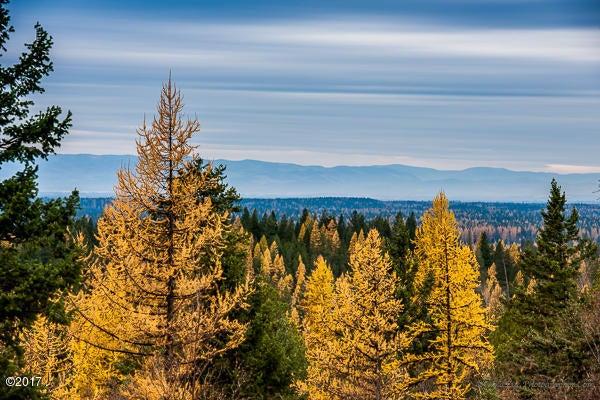 Additional photo for property listing at 60 Big Cedar 60 Big Cedar Bigfork, Montana 59911 United States