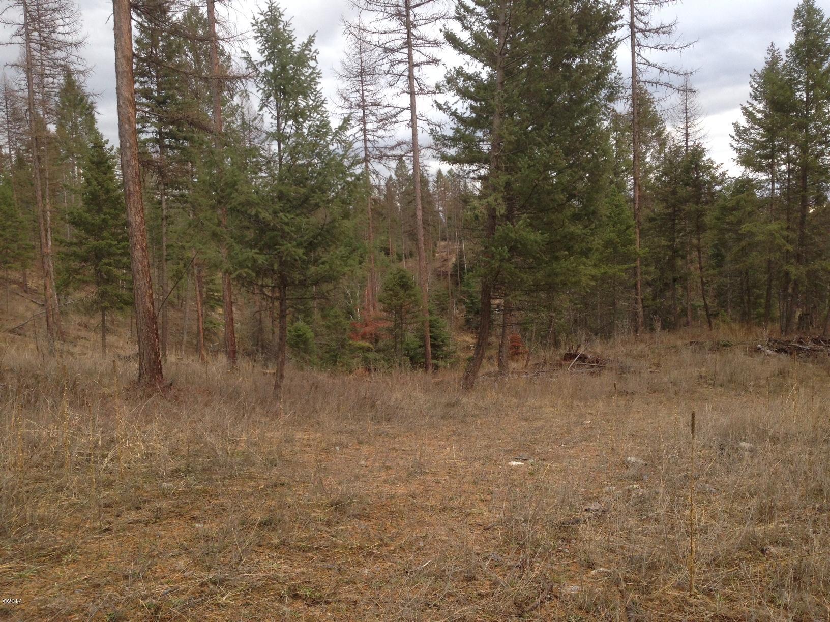 Additional photo for property listing at 395 Kauffman Lane 395 Kauffman Lane Kalispell, Montana 59901 United States