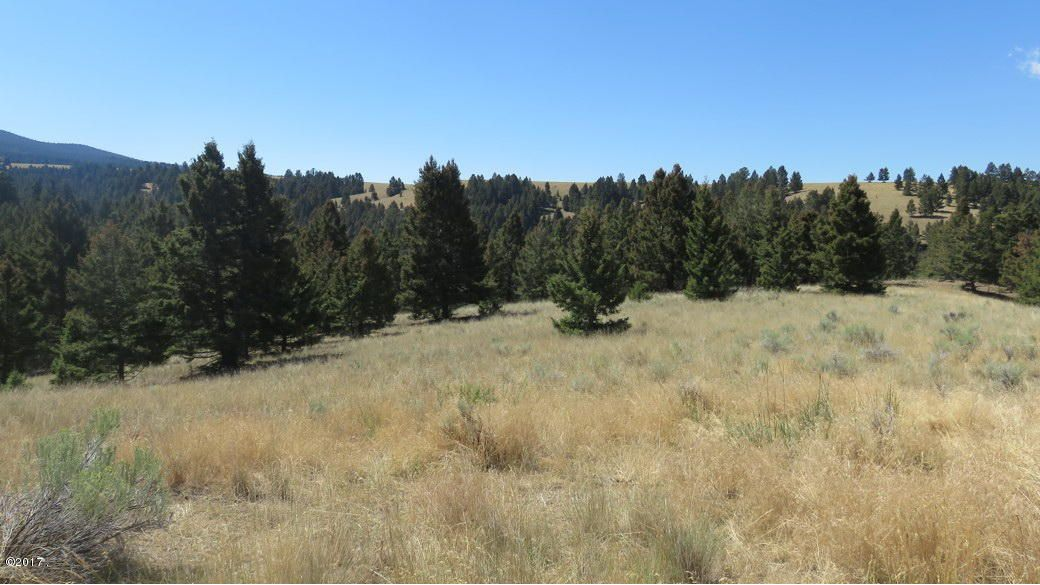 Additional photo for property listing at Perkins Gulch Ranch Perkins Gulch Ranch Warm Springs, Montana 59756 United States