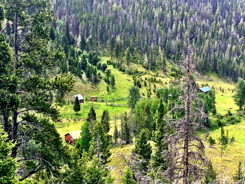 Single Family Home for Sale at Tbd Alice Creek Road Tbd Alice Creek Road Lincoln, Montana 59639 United States