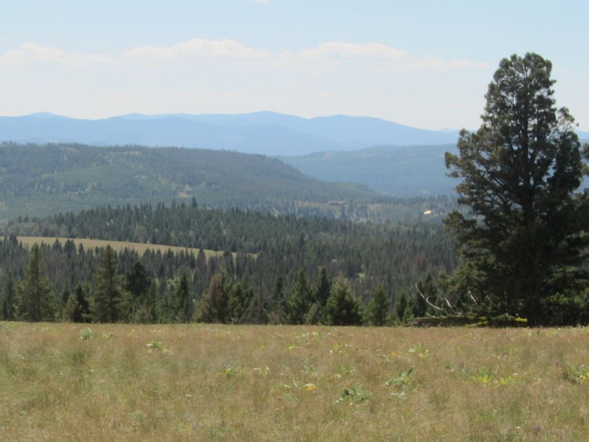 Additional photo for property listing at Alice Creek Alice Creek Lincoln, Montana 59639 United States