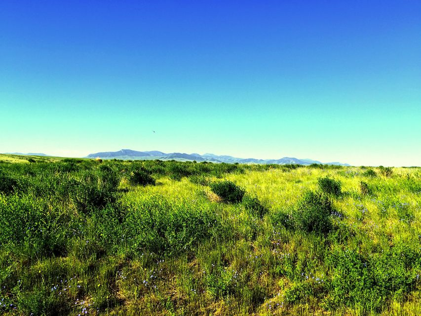 Land for Sale at County Road County Road Geraldine, Montana 59446 United States