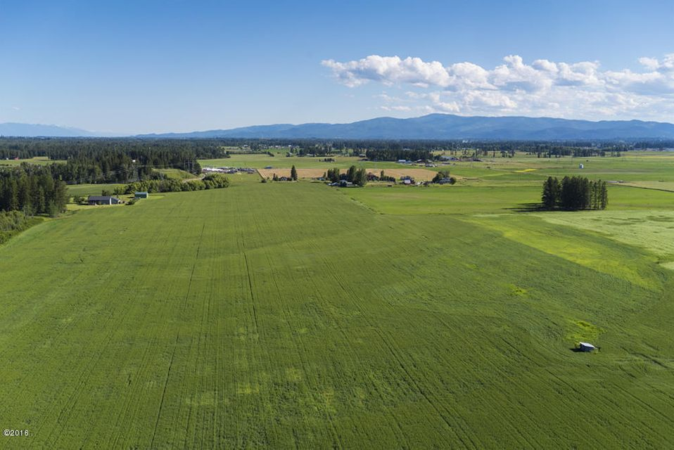 Land for Sale at Birch Grove Road Birch Grove Road Kalispell, Montana 59901 United States