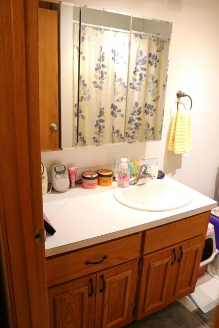 051 Downstairs Bathroom 05