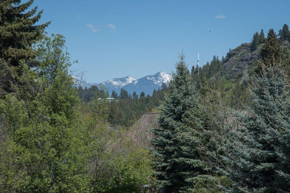 View of the Mountains from back deck