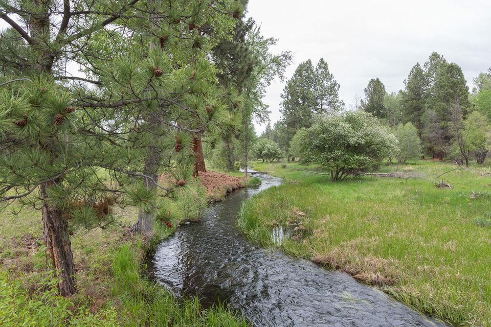 Vole Creek on Ashlin Ranch