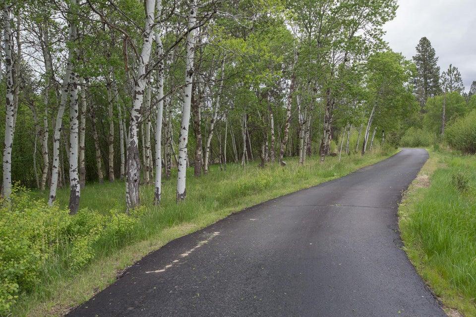Paved Roadway