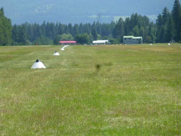 Ferndale Grass Landing Strip Best