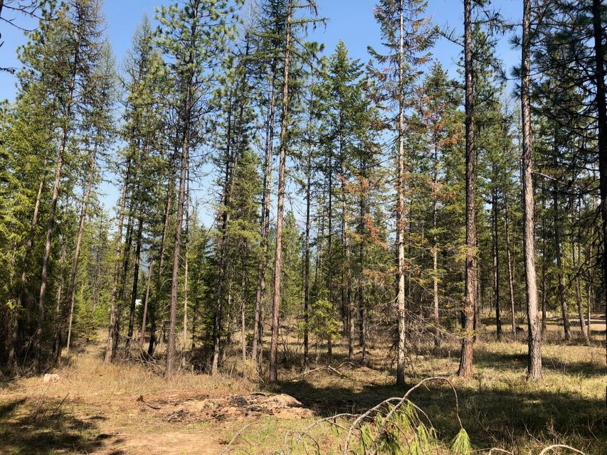 5 acre parcel, electric to lot and meter installed, peaceful MT living.