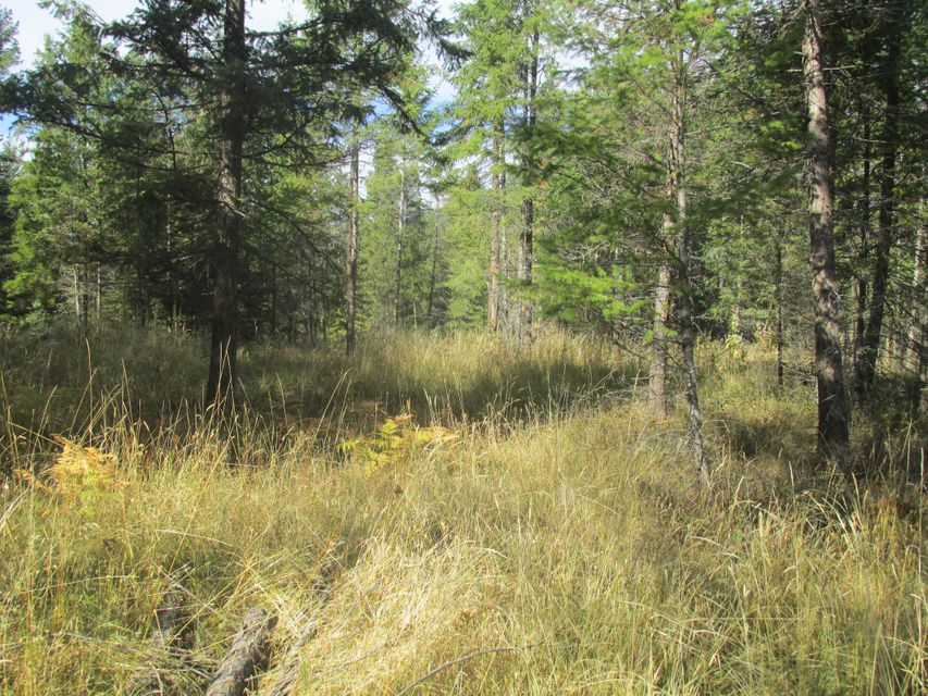5 acre parcel, with deq done, power to lot line, and wildlife abounds, in Sanders County, MT