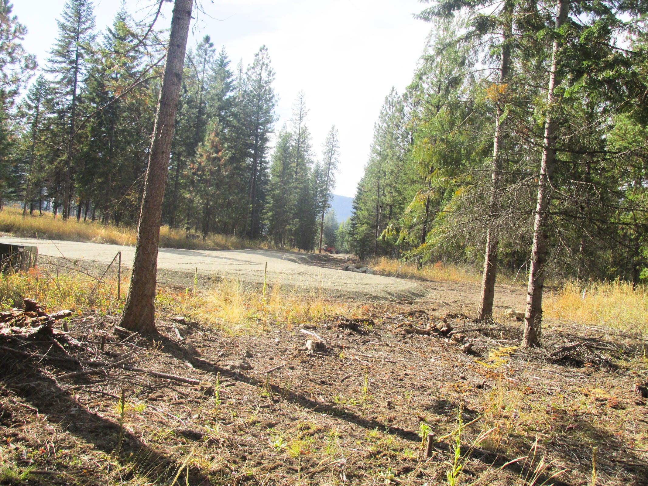 Nice 5 acre parcel near Trout Creek, MT