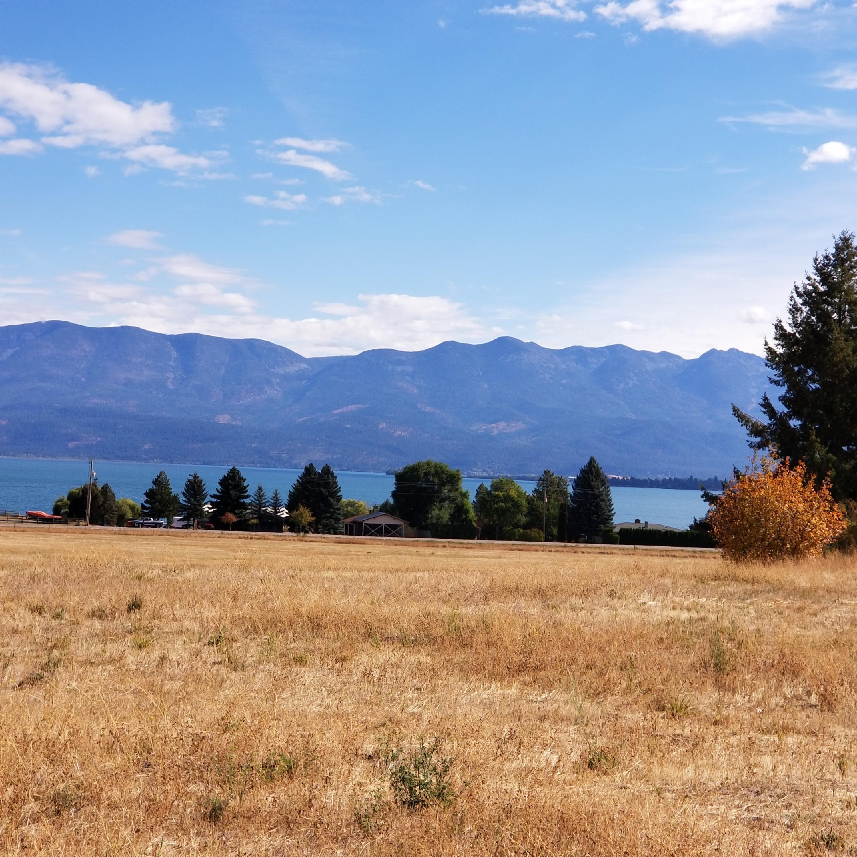 Lake Views from flats