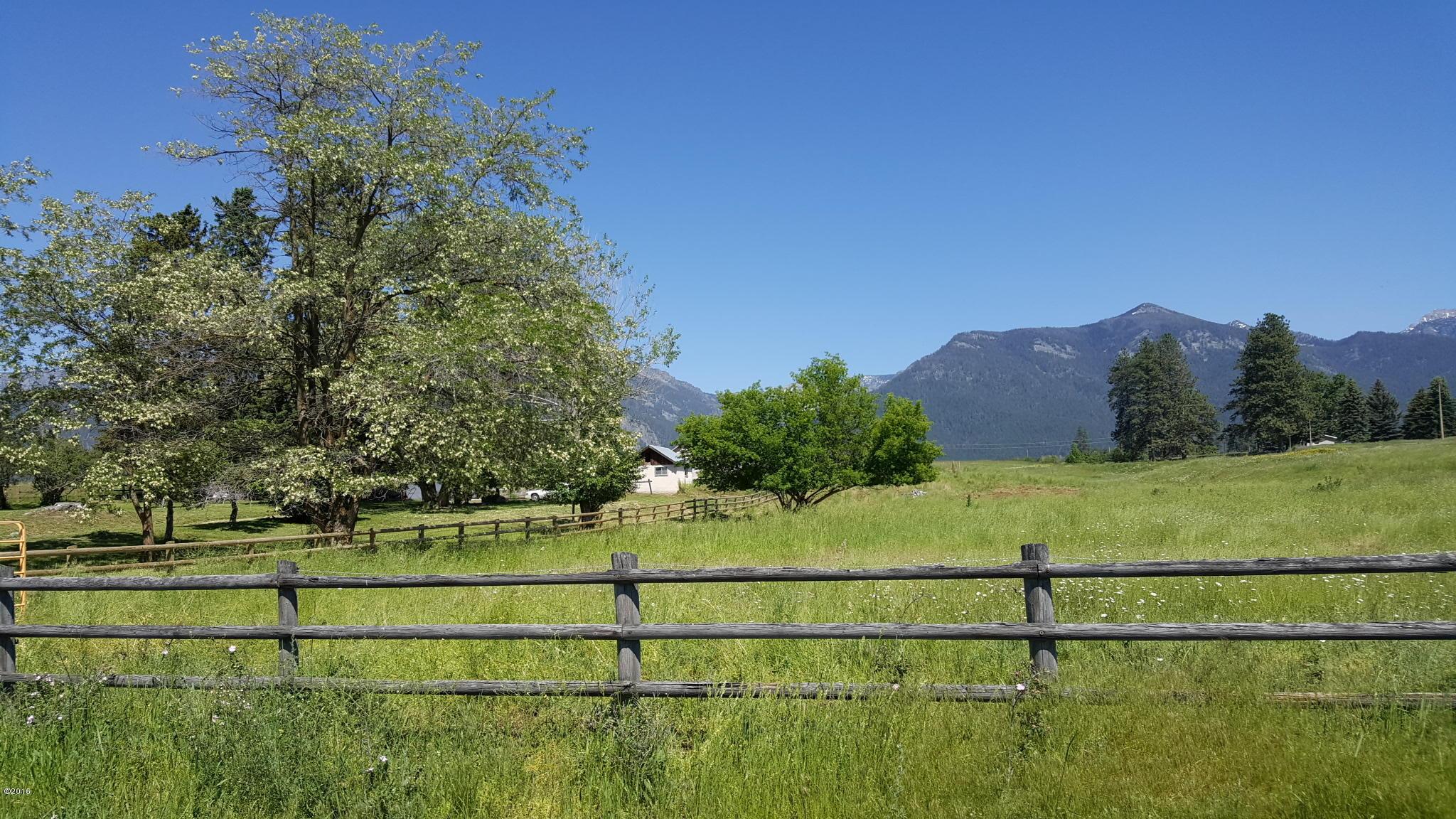 pristine pasture