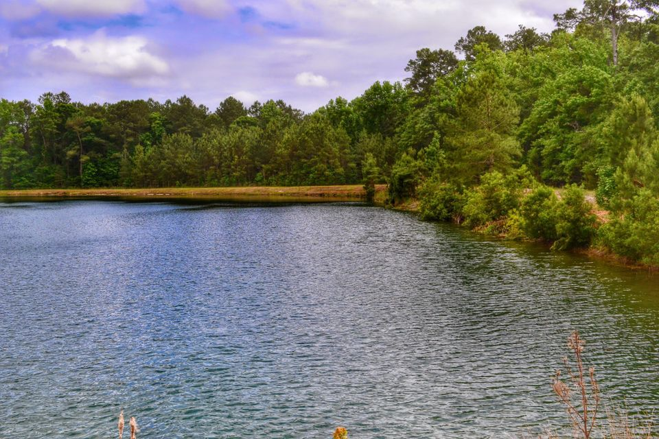 151 George Jones Road,Newport,North Carolina,Agriculture,George Jones,11502675
