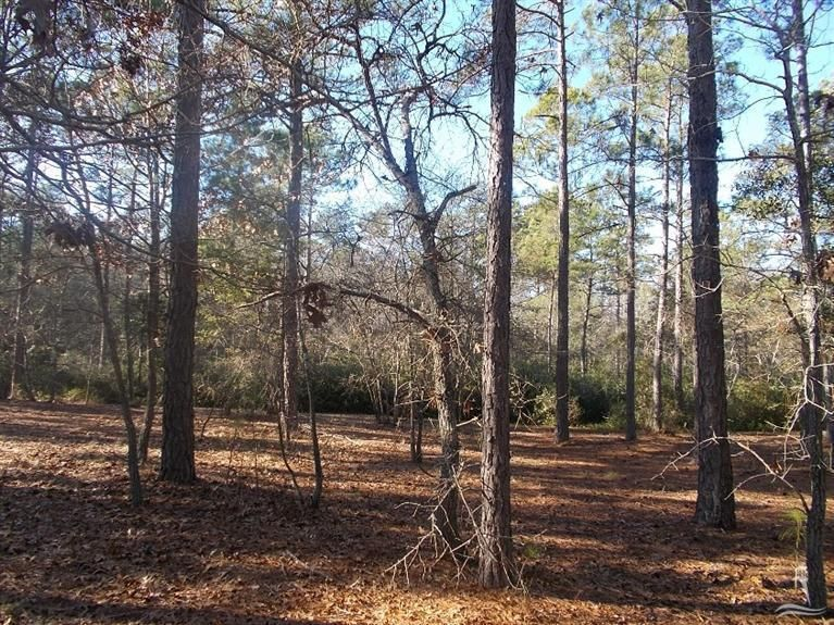 687 Madeira Islands Drive,Bolivia,North Carolina,Residential land,Madeira Islands,20689230