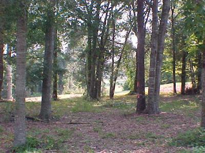Carolina Plantations Real Estate - MLS Number: 20674103