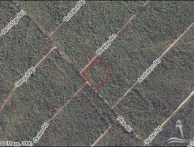 L215&216 Pine Road,Southport,North Carolina,Wooded,Pine,20682703
