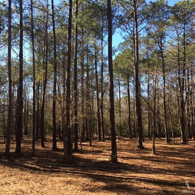 593 Ashbury Drive,Bolivia,North Carolina,Residential land,Ashbury,20689003