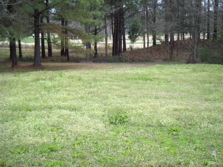 Carolina Plantations Real Estate - MLS Number: 20691225