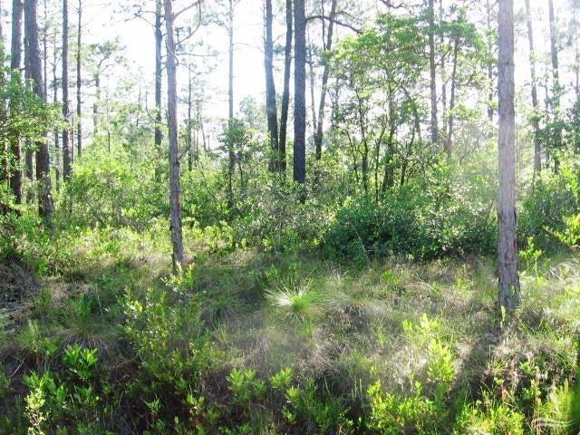 Carolina Plantations Real Estate - MLS Number: 20694128