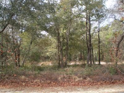 2831 Folly Breeze Ln Se Bolivia,North Carolina,Residential land,Folly Breeze Ln Se,20628469
