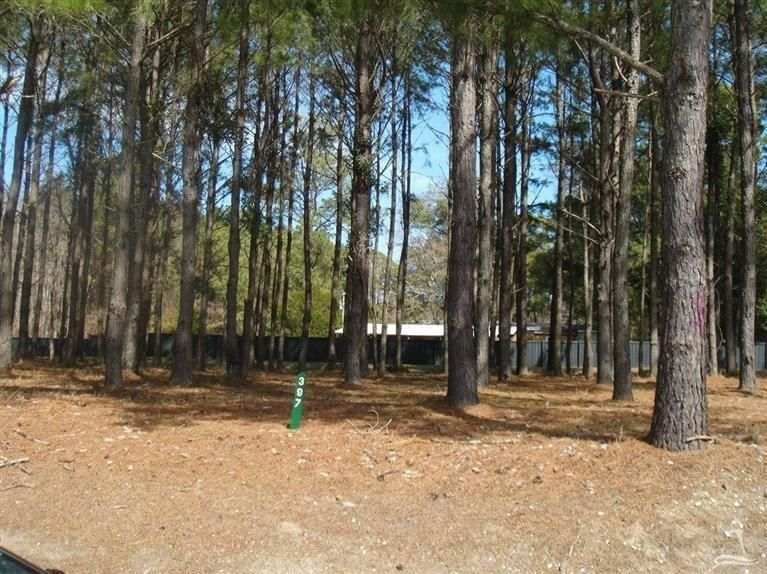 Carolina Plantations Real Estate - MLS Number: 20683789