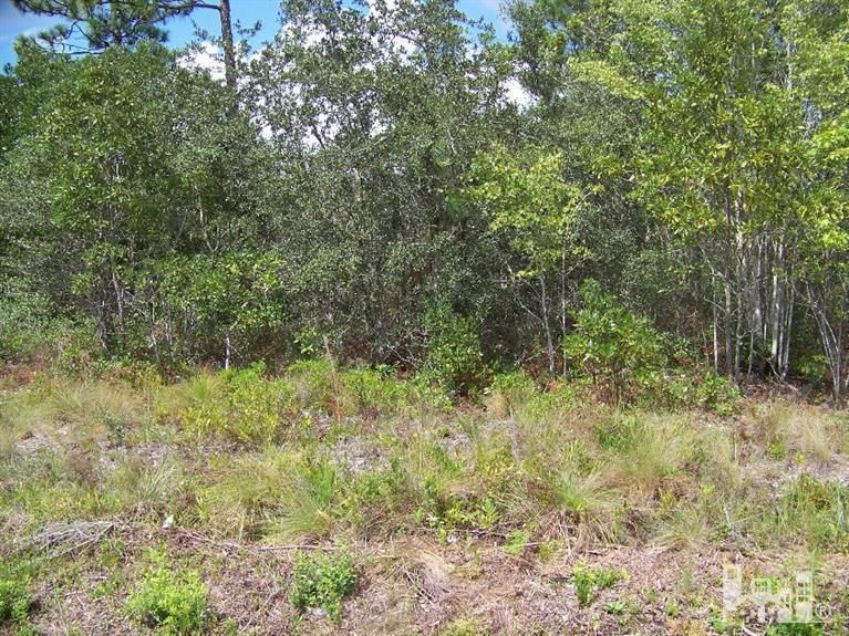 12345 Revere Drive,Southport,North Carolina,Residential land,Revere,30516265