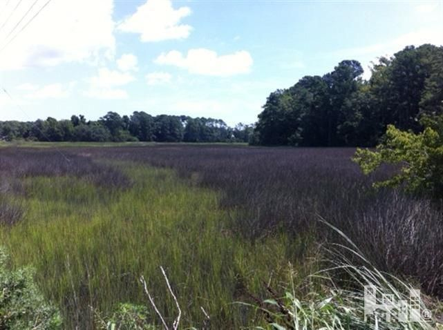1113 Pine Grove Drive,Wilmington,North Carolina,Residential land,Pine Grove,30494796