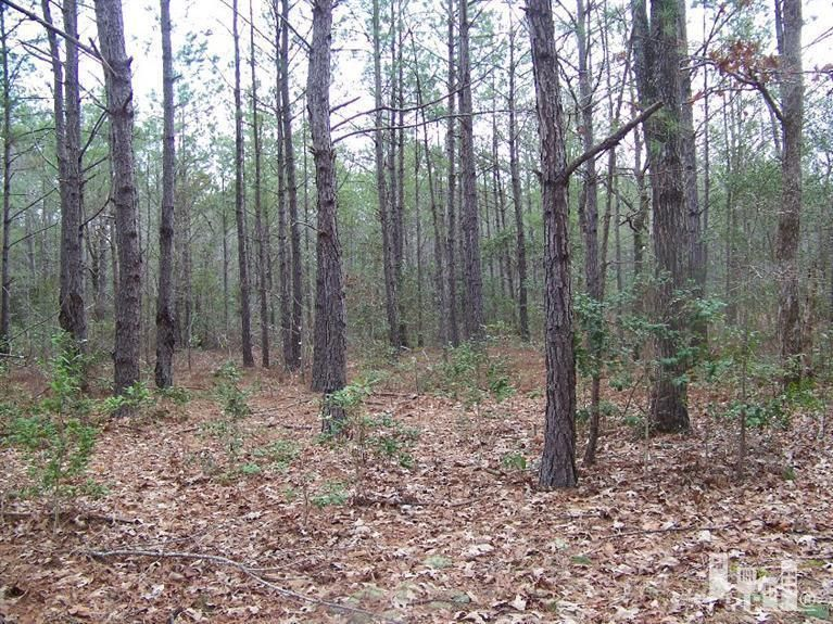 159 North Shore Drive,Southport,North Carolina,Residential land,North Shore,30516276