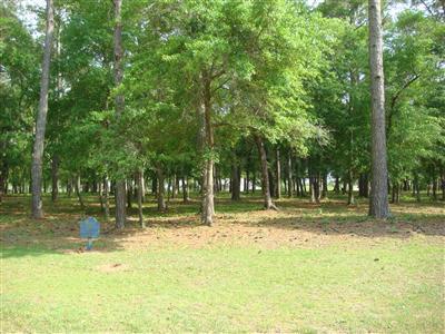 Carolina Plantations Real Estate - MLS Number: 100000447