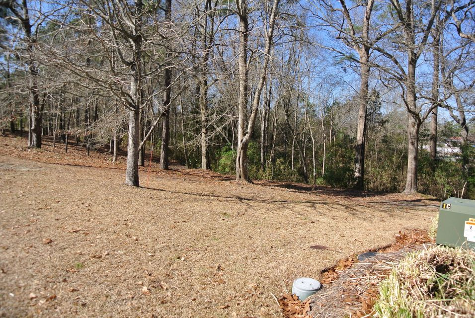 Carolina Plantations Real Estate - MLS Number: 100001873