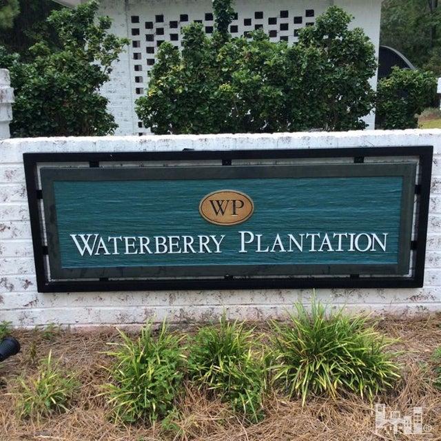 Waterberry Plantation Real Estate - http://cdn.resize.sparkplatform.com/ncr/1024x768/true/20160215143039684177000000-o.jpg