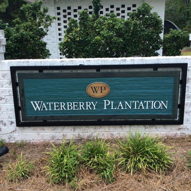 Waterberry Plantation Real Estate - http://cdn.resize.sparkplatform.com/ncr/1024x768/true/20160222055738203727000000-o.jpg