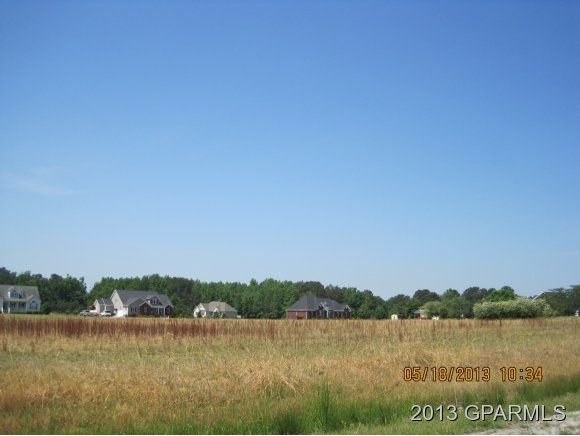 7005 Stantonsburg Road,Farmville,North Carolina,Residential land,Stantonsburg,50109387