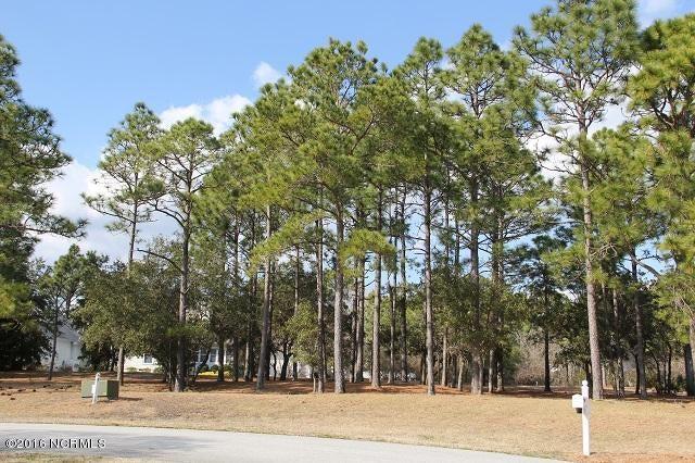 Carolina Plantations Real Estate - MLS Number: 100005441
