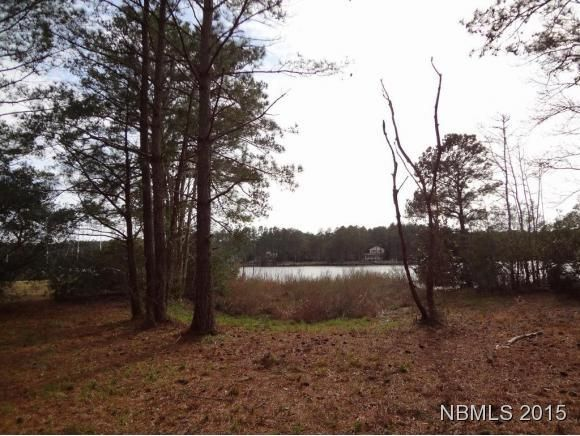 3684 Browns Creek Road,Merritt,North Carolina,Undeveloped,Browns Creek,90098592