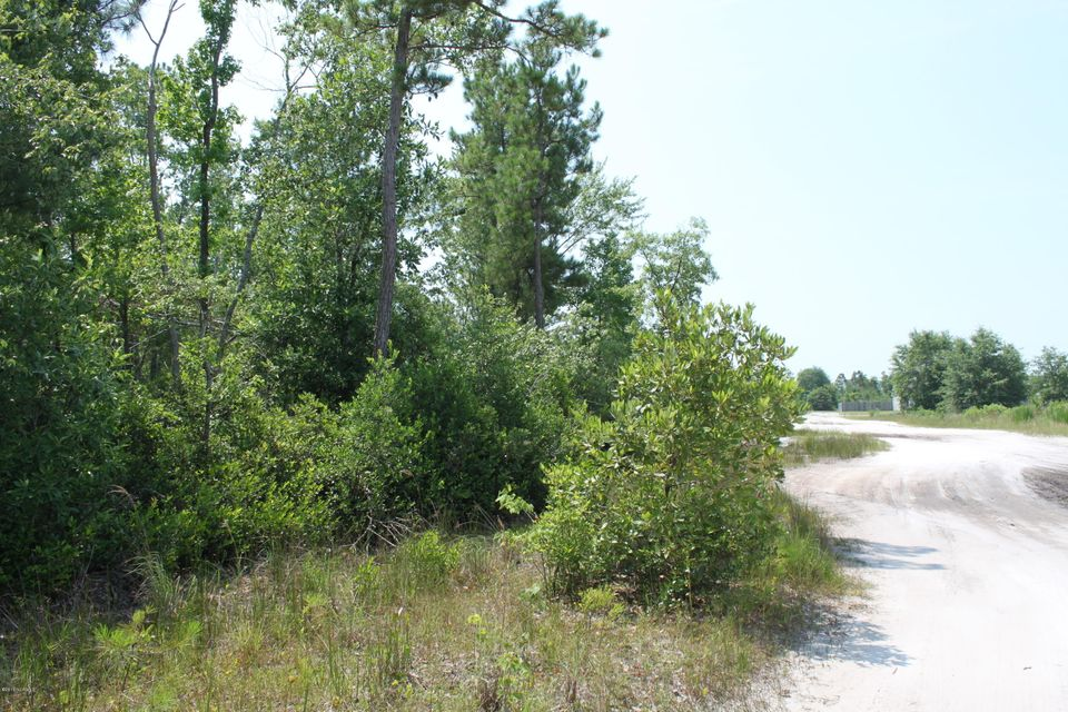 116 Blueberry Fields Road Maple Hill,North Carolina,Residential land,Blueberry Fields Road,100019746