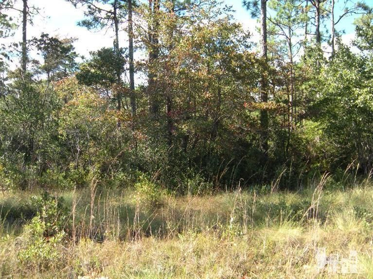 Carolina Plantations Real Estate - MLS Number: 100023688