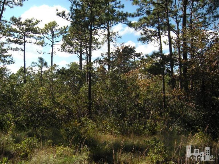 0 Boiling Spring Lake Drive,Southport,North Carolina,Undeveloped,Boiling Spring Lake,100023688
