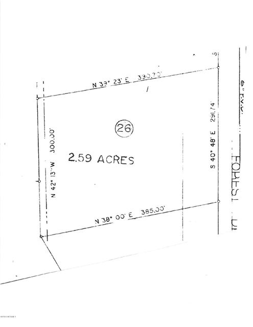 76 Forest Drive,Oriental,North Carolina,Residential land,Forest,100029184