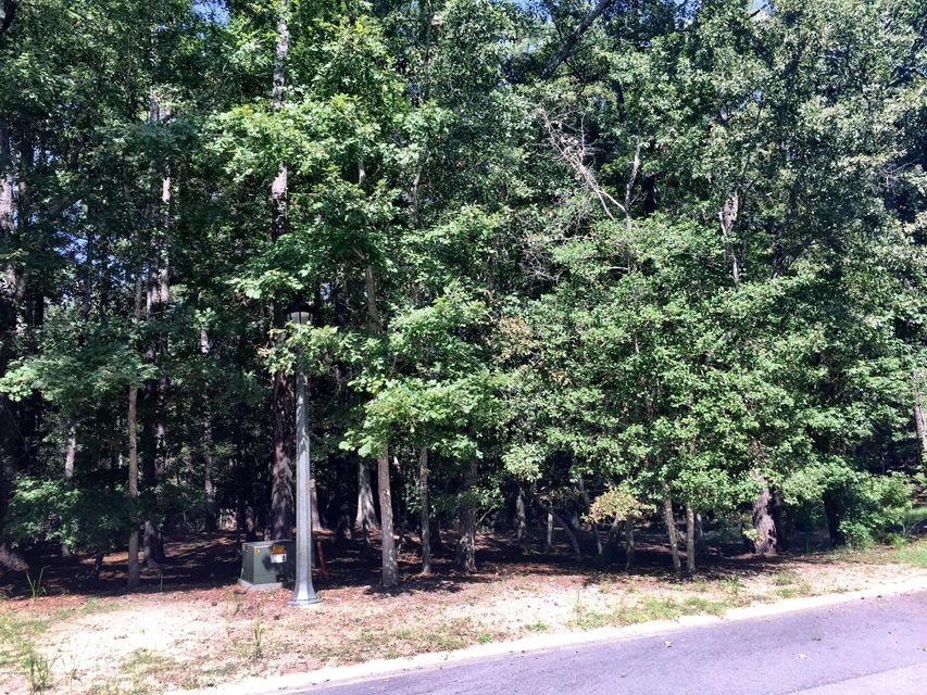 Carolina Plantations Real Estate - MLS Number: 100032504